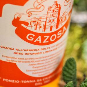 gazosa-img_5267